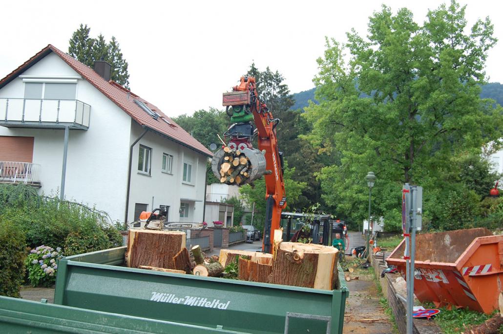 Hasel-Buehl-Baumschneider-Maschinenpark