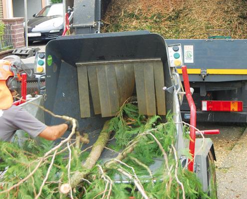 Hasel-Buehl-Baumkletterer-Baumschneider-Haeckselarbeiten