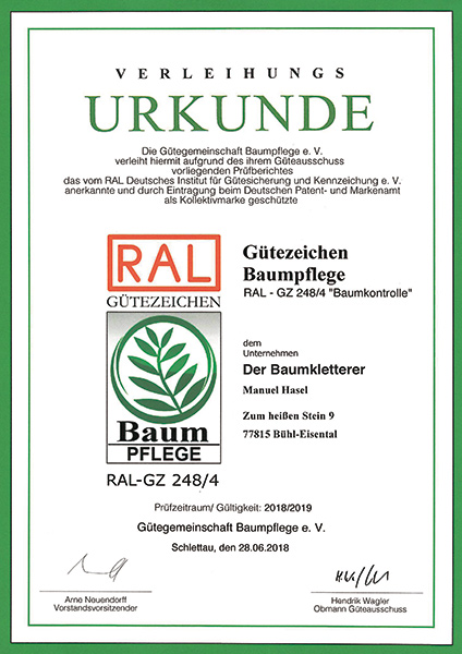 RAL-Baumkontrolle-Hasel-Buehl-Baden-Baden