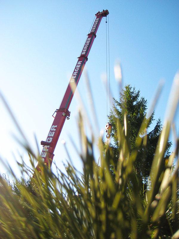 Kran Hasel Einsatz Baumfällarbeiten